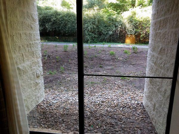 Sheraton Roanoke king room patio door