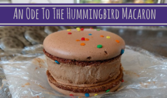 An Ode To The Hummingbird Macaron