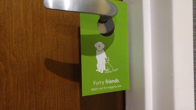 Hyatt House Virginia Beach Pet-friendly hotel