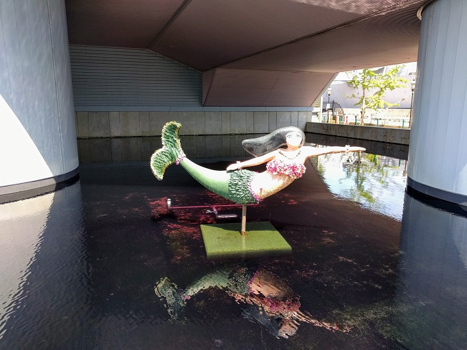 On The Hunt For Norfolk Mermaids - No Home Just Roam