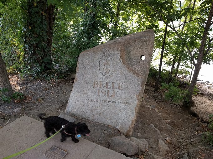 12 - Truffles checking out the Belle Isle sign