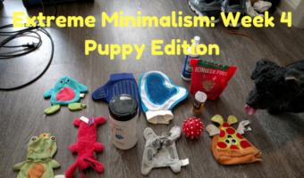 Extreme Minimalism: Week 4 – Puppy Edition