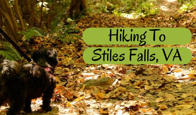 Hiking To Stiles Falls, VA