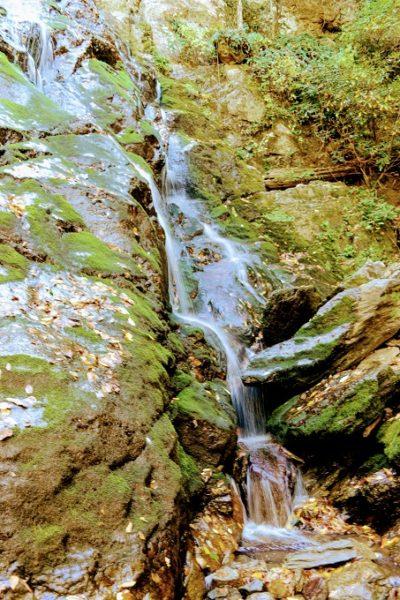Stiles Falls, VA 34