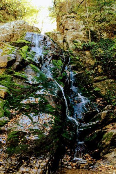 Stiles Falls, VA 35