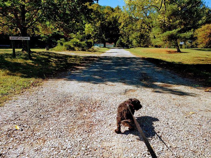 Truffles at Stiles Falls, VA
