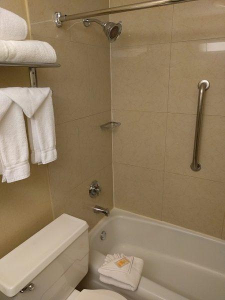Holiday Inn Chicago-Elk Grove bath and shower