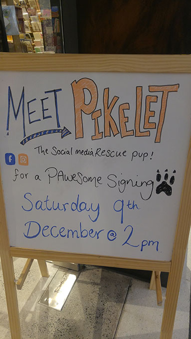 Pikelet pawtographing sign outside Harry Hartog