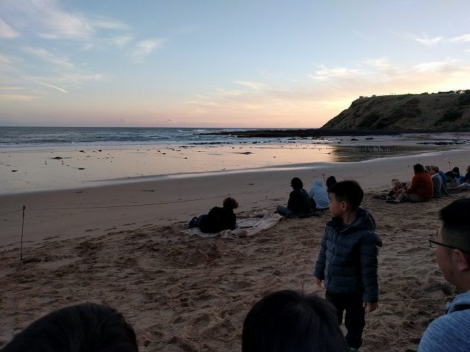 At the beach before the Phillip Island penguin parade