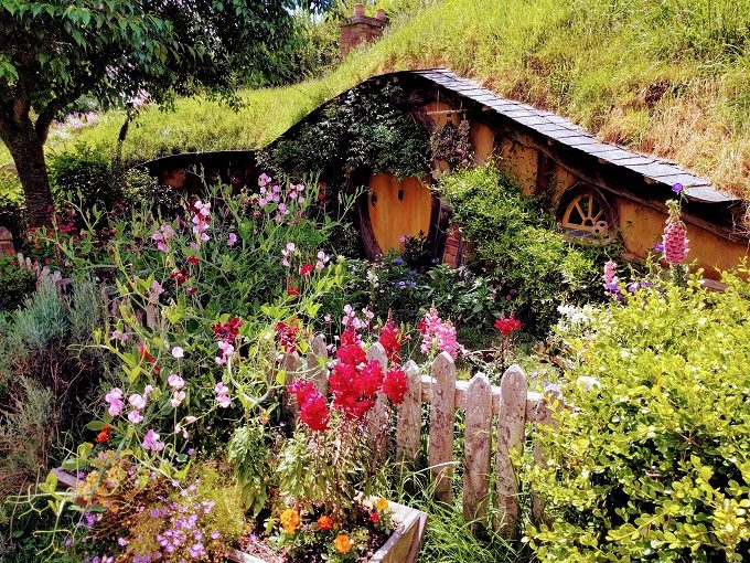 Hobbit house at Hobbiton