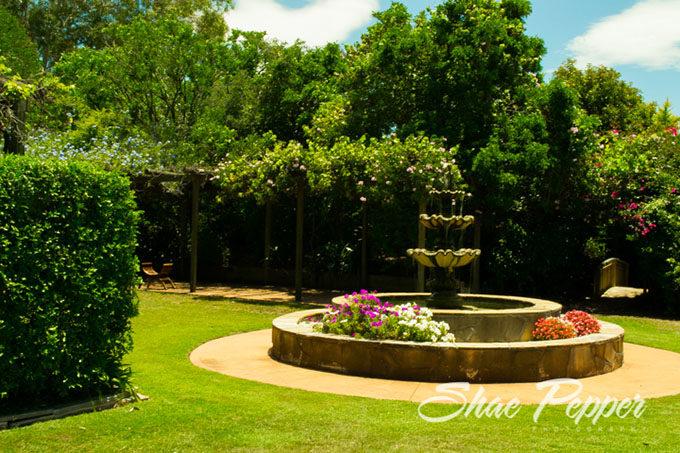 Fountain at Gemelli Estate, Hunter Valley
