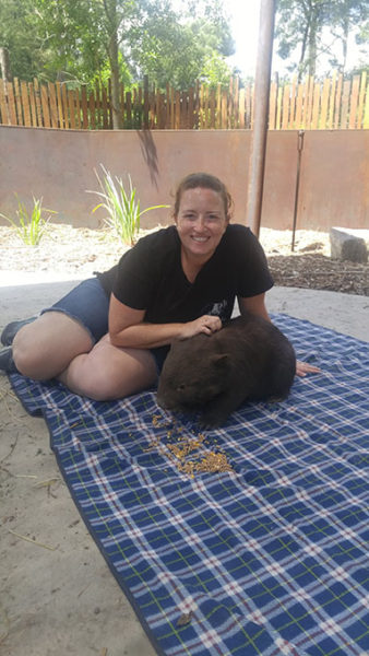 Petting Gem the wombat