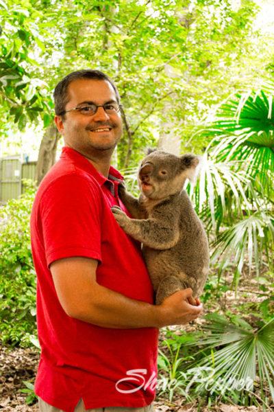 Stephen holding a koala