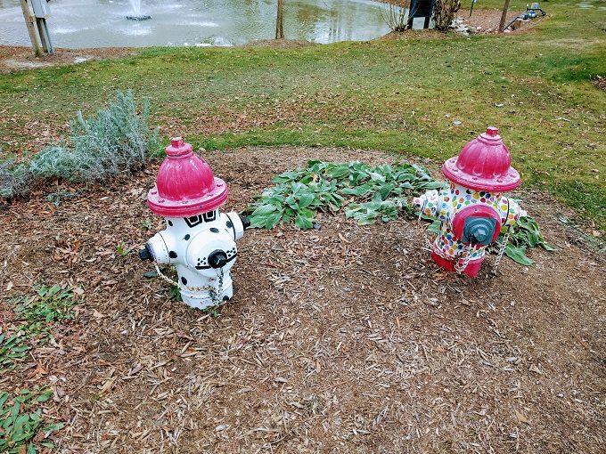 Irmo Community Park fire hydrants