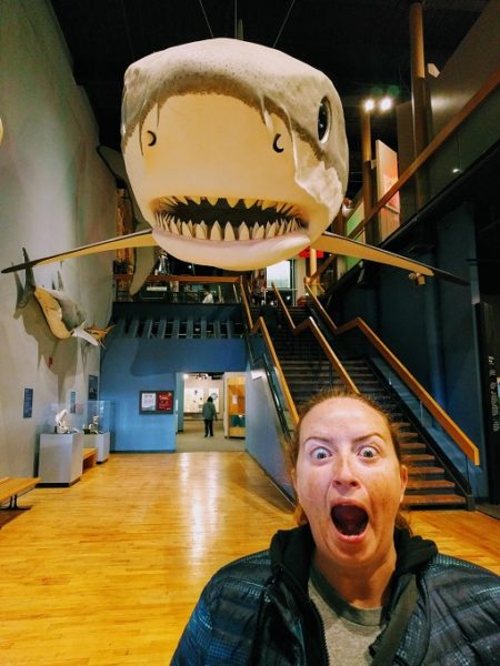 Scary goings on at South Carolina State Museum