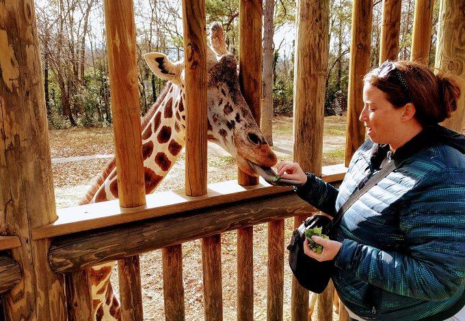 10 Reasons We Loved Riverbanks Zoo In Columbia SC