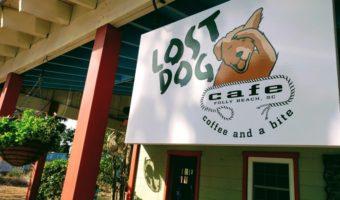 Review: Lost Dog Cafe, Folly Beach, South Carolina