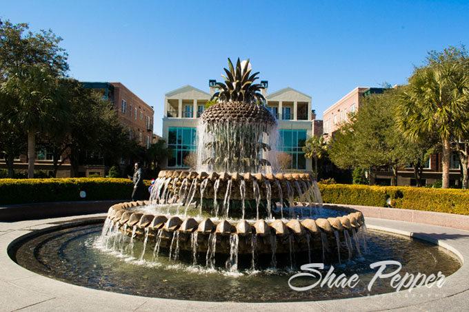 The Pineapple Fountain, Charleston SC