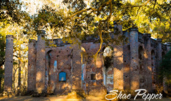 5 Things To Do In Beaufort, South Carolina