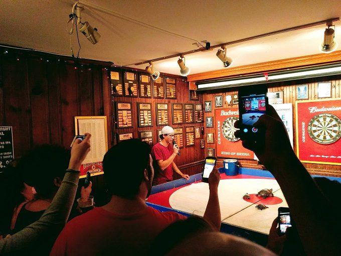 Turdle racing betting shop kick line moves betting